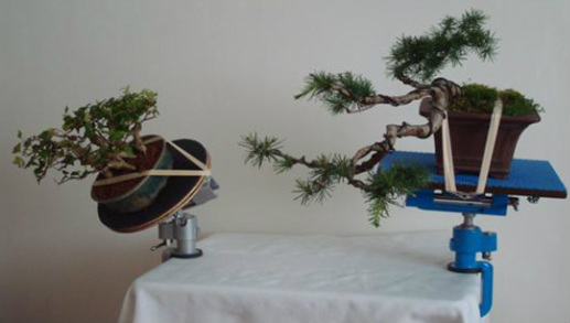 UK Bonsai Tables